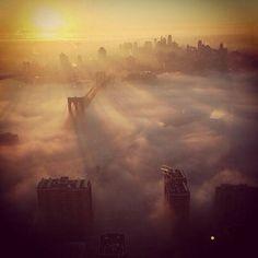 1 misty nyc